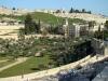 Иерусалим. Церковь Святого Стефана и католическое кладбище