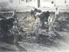 Бат-Ям. Рождение города. Первые поселенцы