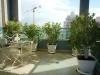 Петах-Тиква. Балкон жилого дома