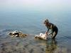 Мертвое море. Целебная грязь