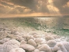 Мертвое море. Рассвет. Соляные камни