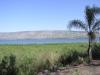 Израиль. Озеро Кинерет. Побережье