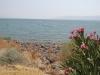 Израиль. Галилейское море