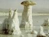 Мертвое море. Скульптуры из соли