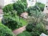 Рамат-Ган. Сад во дворе